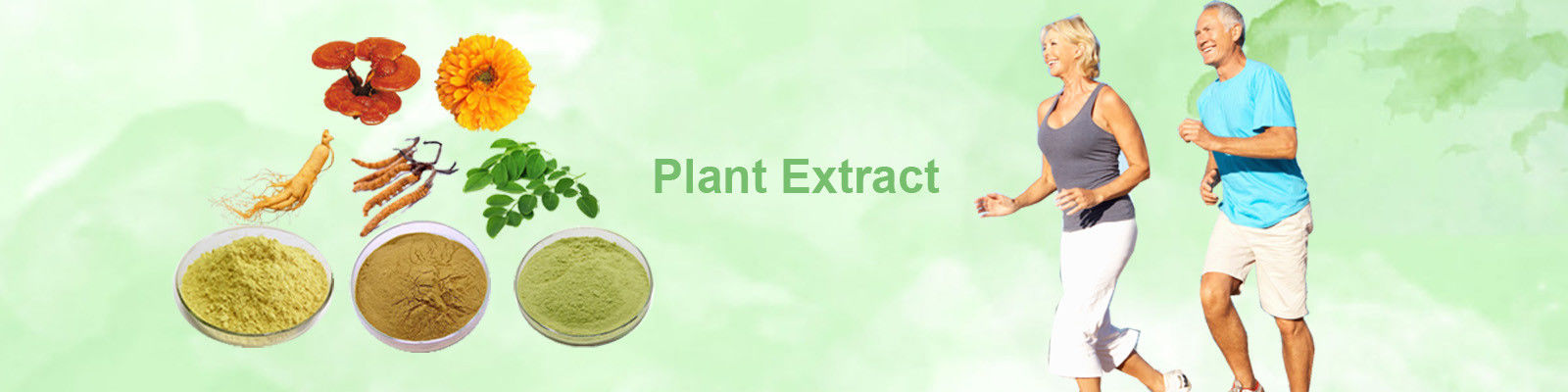 China best Herbal Extract Powder on sales