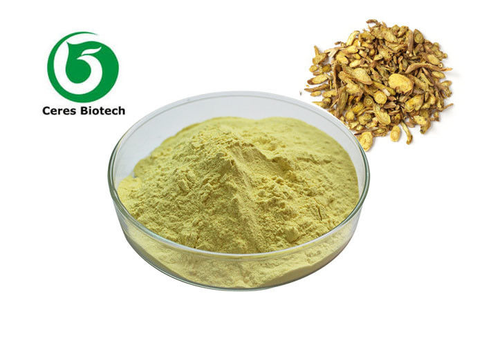 Herbal Extract Powder Scutellaria Baicalensis Root Extract Baicalin 80% 85% 90%