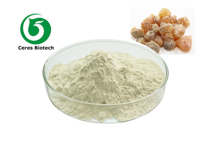 Herbal Extract Boswellia Serrata Extract Powder Boswellia Acid 65% 85% 90%
