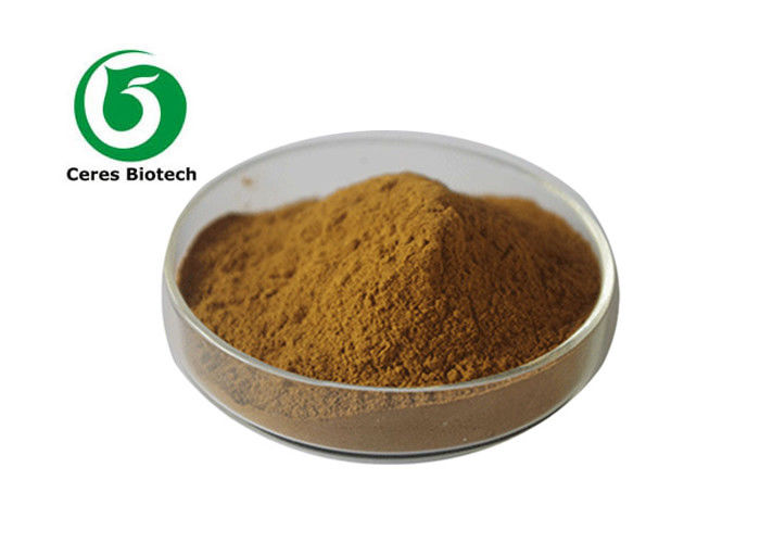 Pharmaceutical Natural 20/1 Schisandra Chinensis Extract Powder