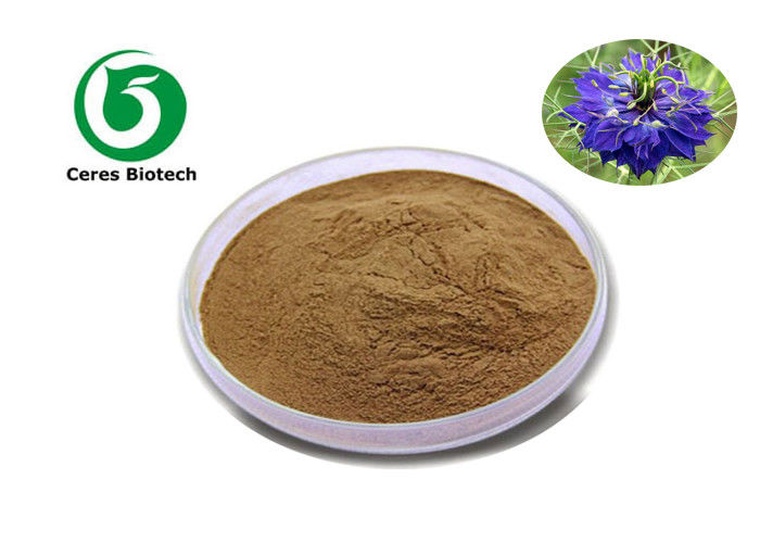 100% Natural Herbal 10/1 Nigella Sativa Extract Powder