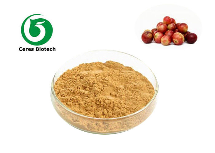 Super Vitamin C Camu Camu Fruit Herbal Extract Powder