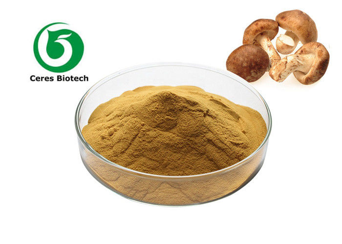 Health Care Pharmaceutical Shiitake Mushroom Extract 40% Polysaccharide