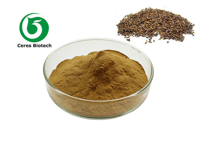Anthraquinone 5% Natural Herbal Extract Powder Cassia Seed Extract Powder