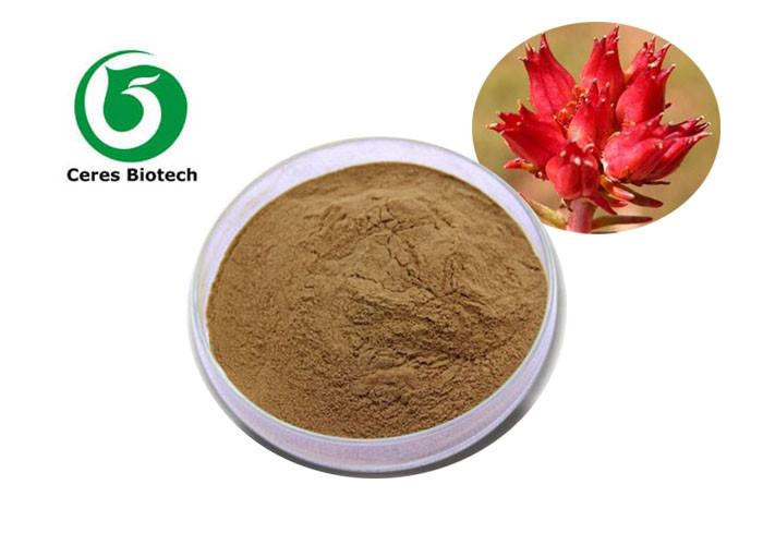 Natural Rhodiola Rosea Extract Salidroside Rosavins for health care